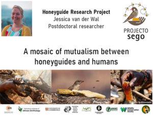 Jessica van der Wal African BirdFair talk