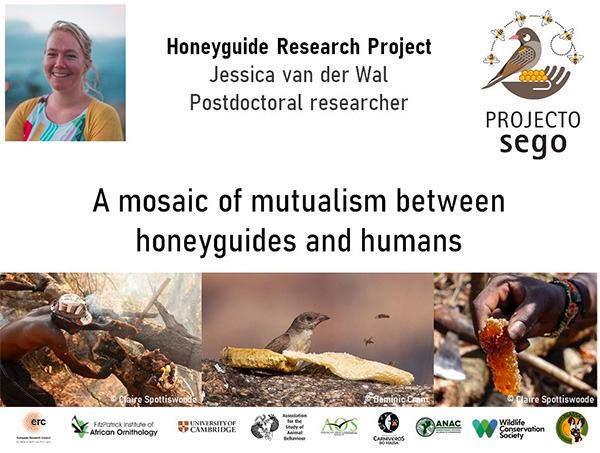 Dr Jessica van der Wal gives a talk on honeyguide mutualism research at the African BirdFair